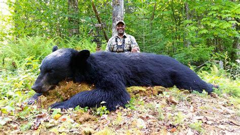 Outdoor Adventures Worldwide   Maine Black Bear   Option 1