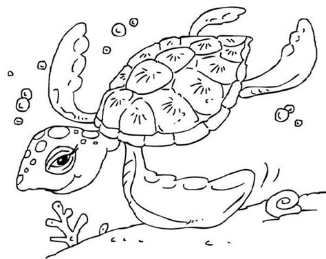 happy turtle coloring page printable turtle coloring pages kids 22960