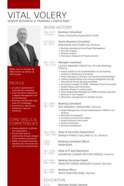 Sample Management Consulting Resume by Business Consultant Resume Samples Visualcv Resume