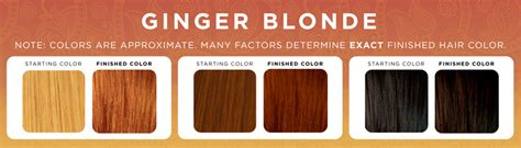 ginger hair chart ginger blonde henna hair dye henna color lab henna