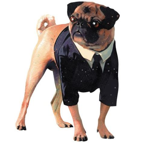 the pug from in black in black pug