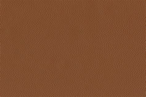light brown paint swatches brown color swatch pixshark com images galleries