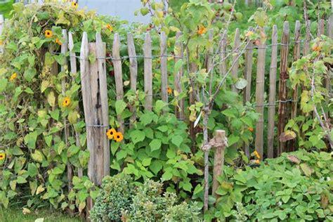welche bettdecke für den winter idee bauerngarten zaun
