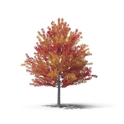 autumn png images psds   pixelsquid