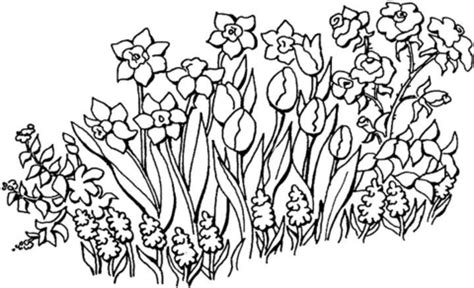 flowers in the garden coloring page supercoloring com