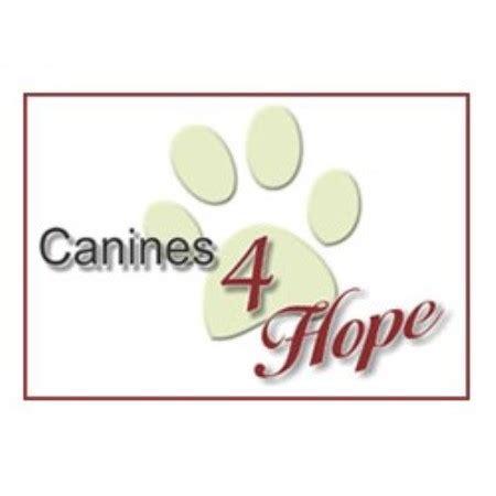 grooming stuart fl canines 4 stuart florida 34997