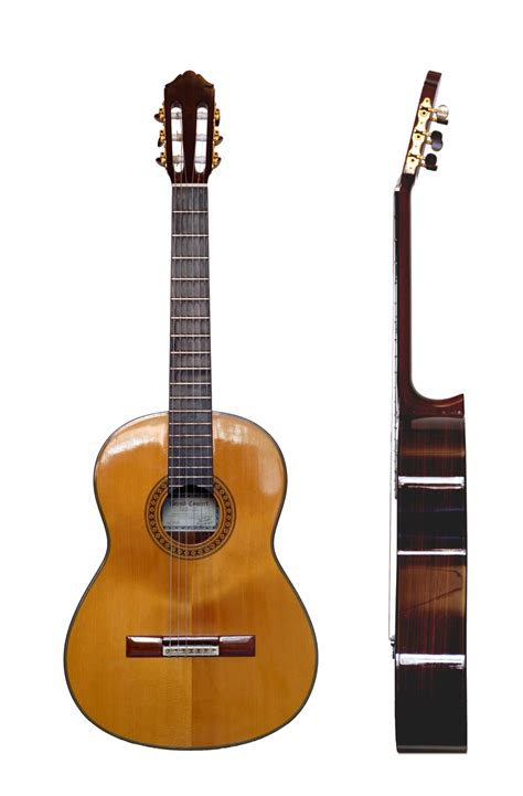 0043051219 six cordes une guitare volume types de guitares