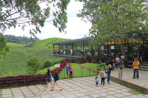 Teh Hijau Boh Di Malaysia 9 tempat menarik percuma wajib singgah bila rancang