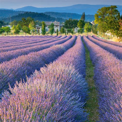 best provence five of the best villages to buy property in the south