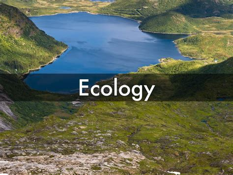 ecology theme for windows 8 1 free download presentations and templates by misheel battur