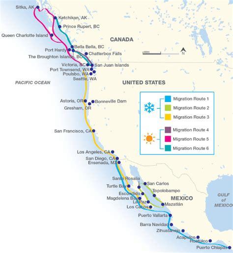 map mexico west coast the west coast s annual migration boatus magazine