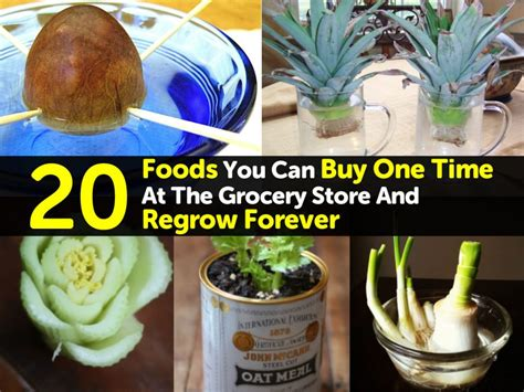 can you buy bellami in stores 20 foods you can buy one time at the grocery store and