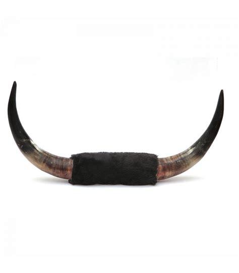 imagenes de cuernos imagenes de cuernos de toro bing images