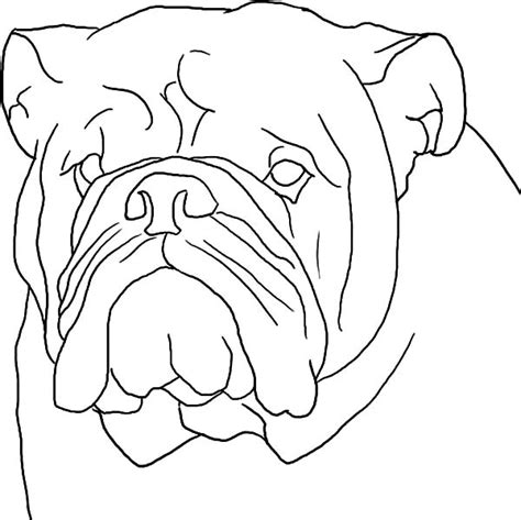 coloring pages of dog head boxer dog coloring pages