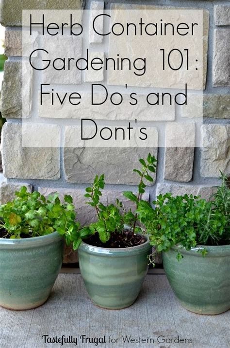 herb garden ideas 25 best ideas about patio herb gardens on