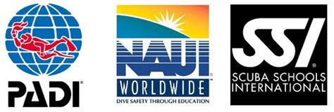 dive certification best scuba diving certifcation courses scubasuperpower