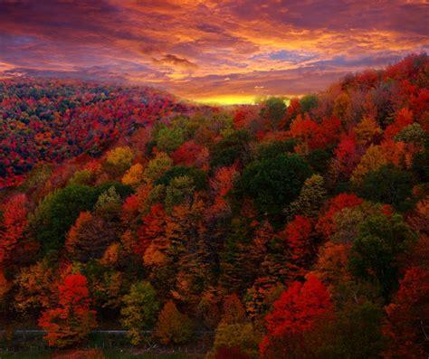 carolina fall colors fall foliage in western carolina hendersonville