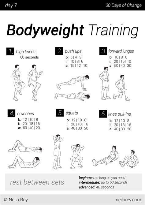 workout plan for men at home no equipment 30 day workout program workout programs workout and programming