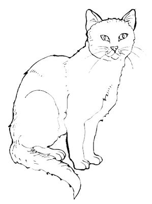 free coloring pages cats free printable cat coloring pages