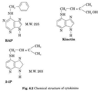 types  hormones present  plants biotechnology