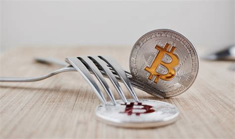 bitconnect fork what is a fork in cryptocurrency coinpupil