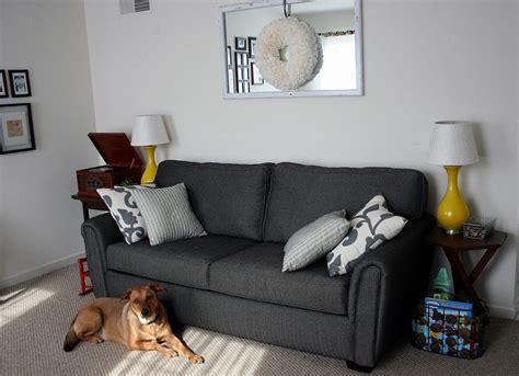 dark grey sofa living room ideas simply wooden freestanding sliding pet gate design with