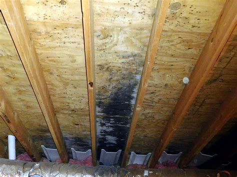 venting fan through roof bathroom fan venting through soffit 28 images how to