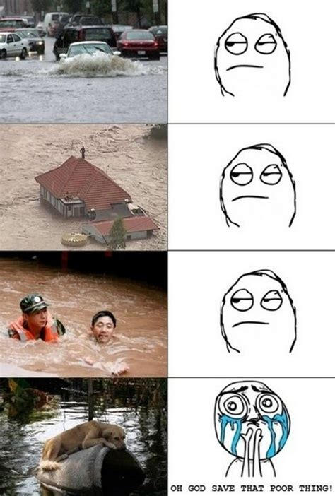 Movie Memes Funny - movie memes 12 pics