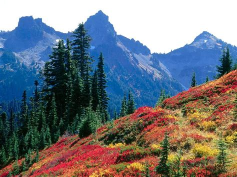 most beautiful places in the united states most beautiful places in the united states mt fury