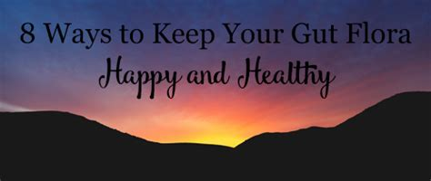 8 Ways To Hes A Keeper by 8 Ways To Keep Your Gut Flora Happy And Healthy Kare S