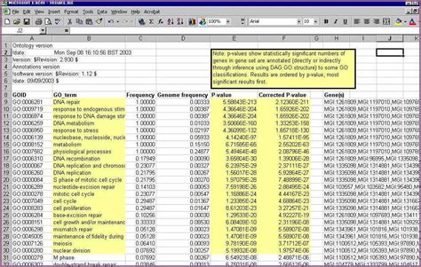 excel spreadsheets templates excel spreadsheet templates designproposalexle