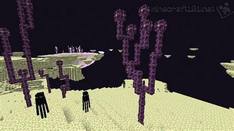 Minecraft Guide To The Nether The End the end minecraft 101