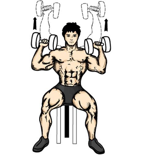 seated dumbell press one arm dumbbell press fitness black book