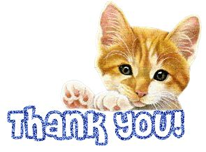Thanks Aunties We Are The Cat In The Flickr by Thank You Thank You Much The Third Quarter Pledge