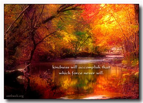 quotes about fall colors quotesgram autumn colors inspirational quotes quotesgram