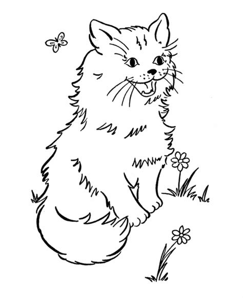 free coloring pages cute cats free printable cat coloring pages for kids