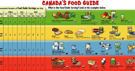 s guide vegetarian diet following the canadian food guide