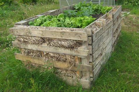 pallet raised bed bbc the l a b projects ngcfi