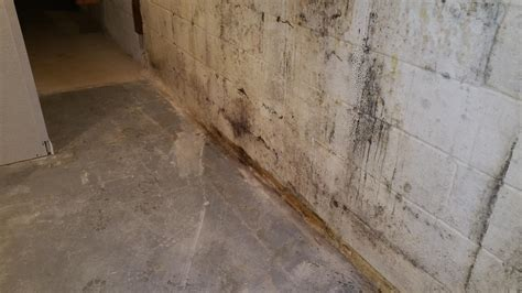 basement waterproofing in ct
