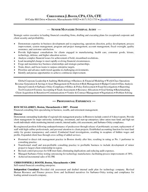 Internal Auditor Resume   Best Template Collection