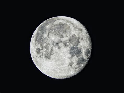 the moon elon musk spacex plans to fly humans around the moon in