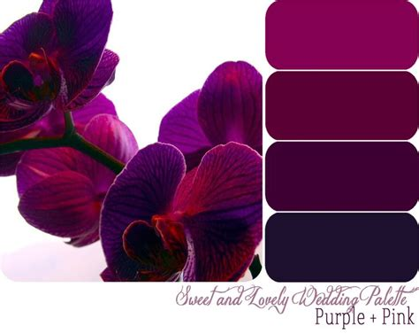 purple color combination best 25 purple color schemes ideas on pinterest purple