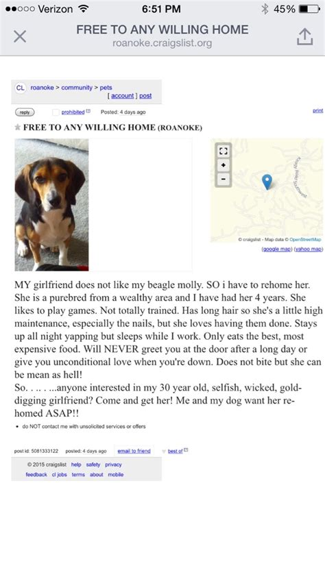 buying a puppy on craigslist this ad on craigslist takes a hilarious turn mandatory