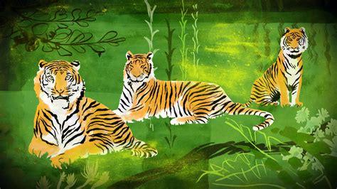 imagenes de tres tristes tigres tres tristes tigres filmfestivals com