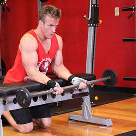 reverse wrist curl over bench palms up barbell wrist curl over a bench exercise guide and video