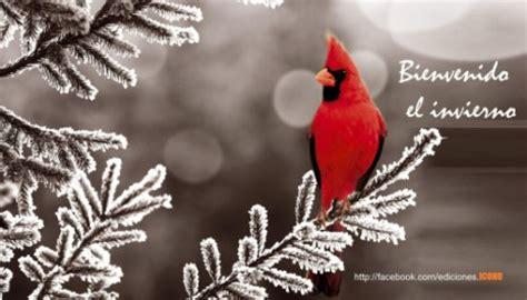 imagenes invierno whatsapp bienvenido invierno sentimientos encontrados 161 qu 233 fr 237 o