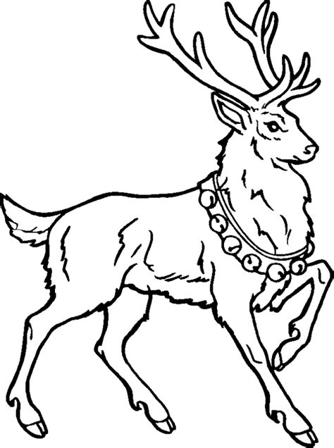 free coloring pages of christmas deer