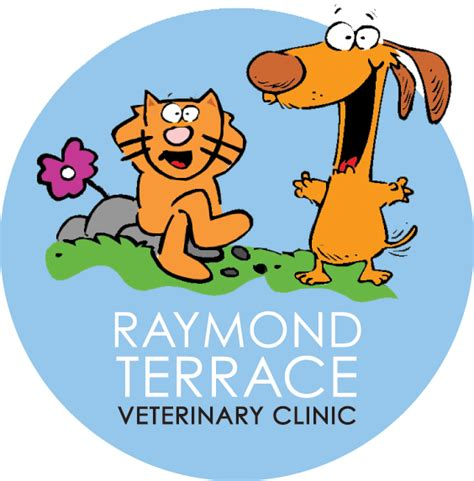 terrace vet contact us raymond terrace veterinary clinic