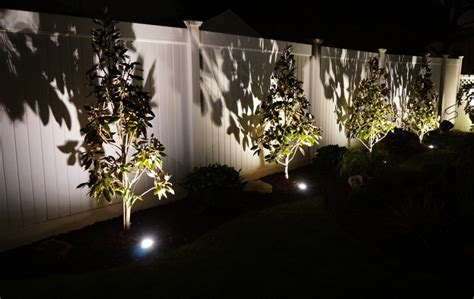 landscape flood light vs spotlight how to choose floodlights for your landscape volt 174 lighting