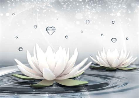 fiori di loto di carta carta da parati fiori di loto bianchi gocce acqua